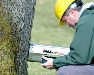 tree risk assessment service