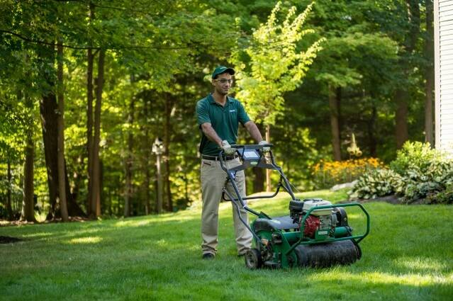 lawn aeration service