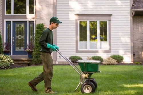 lawn fertilizer service
