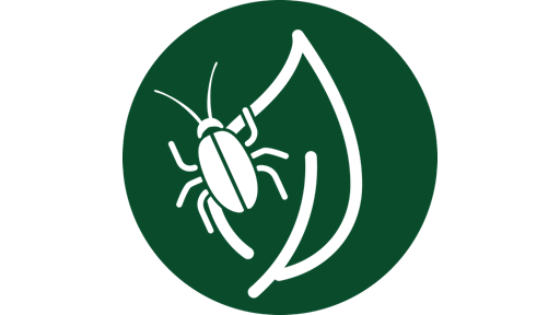 >> Pest & Disease Resource Center