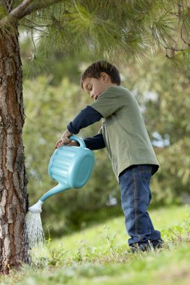 Kid watering tree