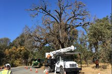 DRG Environmental Team Aids Inspections for PG&E