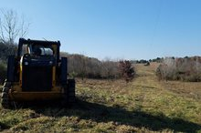 WILLS CREEK LAND REFORESTATION, COSHOCTON COUNTY, OH
