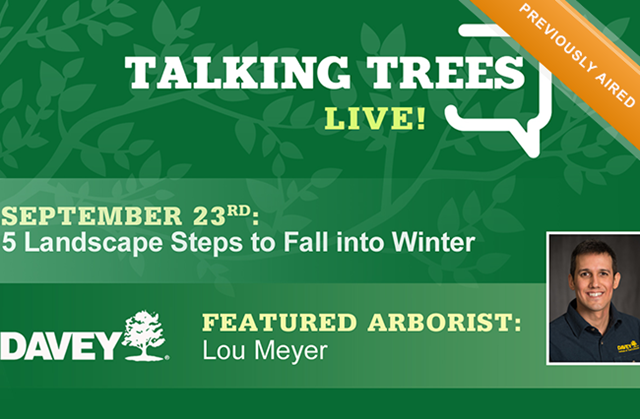 preparing your landscape for fall into winter