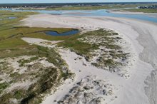 ENVIRONMENTAL PERMIT COORDINATION AND BIRD MONITORING FOR MASON INLET RELOCATION PROJECT, WRIGHTSVILLE BEACH, NC