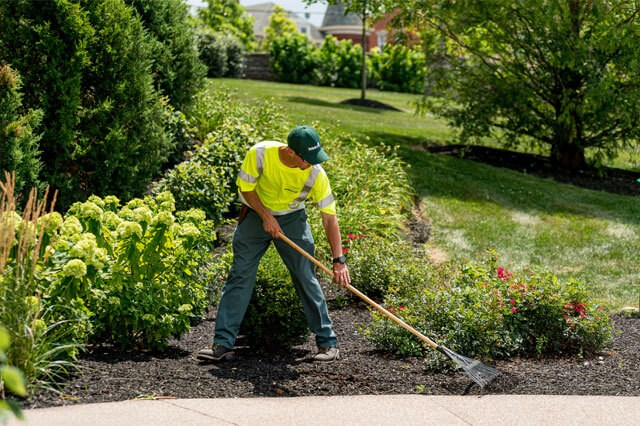 Davey Commercial Landscaping Services