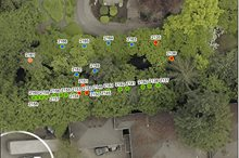 TREE INSPECTION AND PROTECTION PLAN, LAKE FOREST PARK, WA