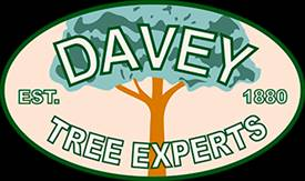 Davey Tree Logo Old