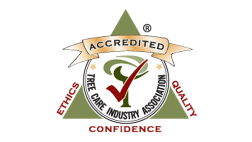 TCIA Accredited Company